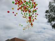 heliumballonnen-16