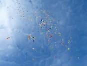 heliumballonnen-32