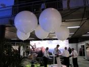 heliumballonnen-25