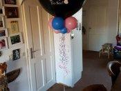 Gender reveal ballon01.jpg